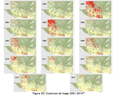 Este mapa de cicatrices de fuego entre el año 2000 y 2014 elaborado por el CONAP da cuenta de la vulnerabilidad al fuego del Parque Nacional Laguna del Tigre, ubicado al este de la RBM, una zona que alberga 34 comunidades ilegales, un pozo de extracción petrolera y es paso de migración ilegal y droga desde Centroamérica a Estados Unidos. Fuente: consolidado elaborado por CONAP y recogido en el Informe de Gobernabilidad de la RBM publicado en 2015.