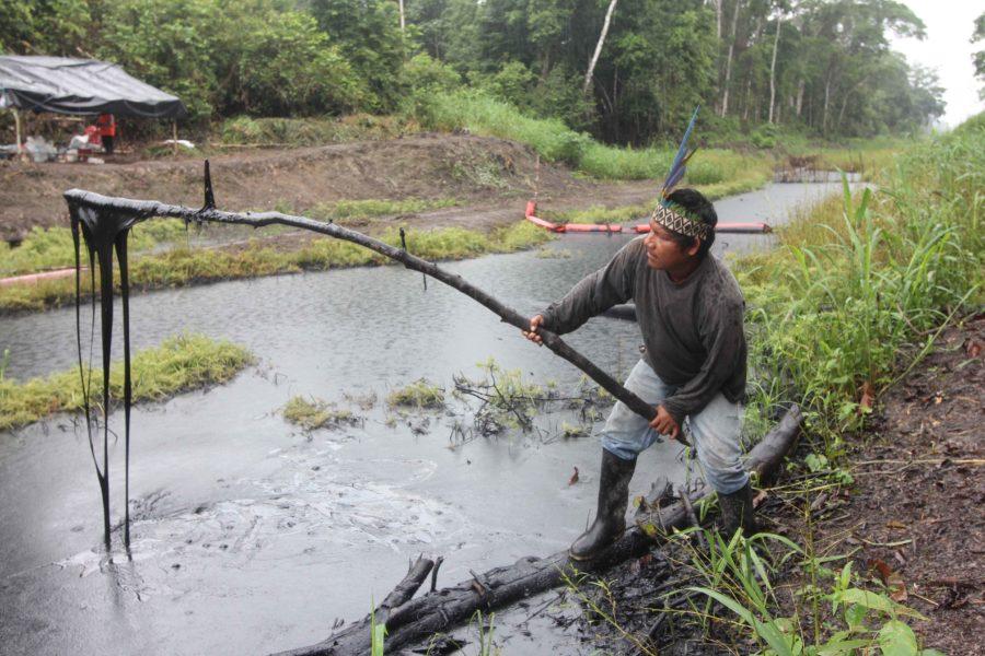 Pastor Dahua, presidente de la comunidad de Monterrico, sumerge un palo en el petróleo de un derrame reportado el 25 de septiembre. Foto: Copyright © Barbara Fraser.