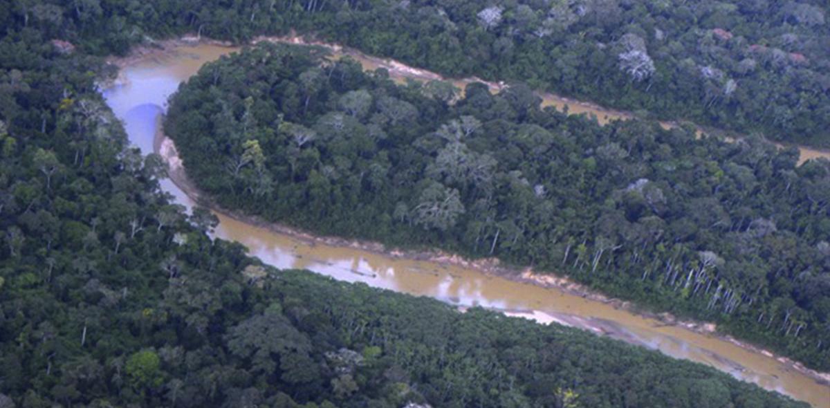 Parque Nacional Alto Purús. Fotografía del Ministerio de Cultura.