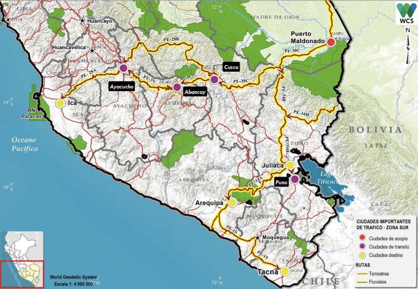 Rutas de tráfico ilegal de especies en zona sur. Mapa: WCS/ Serfor.