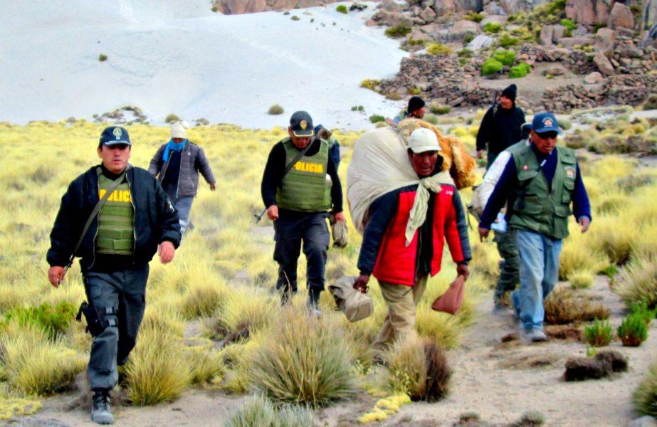 Cazador de vicuñas capturado en Moquegua. Fotografía de Serfor.