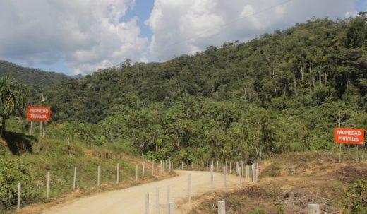 Panorámica de la entrada a la comunidad de Nankits. Foto de Braulio Gutiérrez