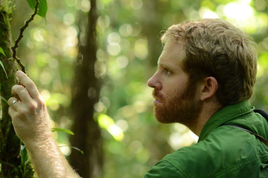 Yntze Van Der Hoek trabaja en la elaboración de un checklist de las especies de aves que existen dentro de la reserva biológica Colonso Chalupas. Foto: Cortesía Ikiam.