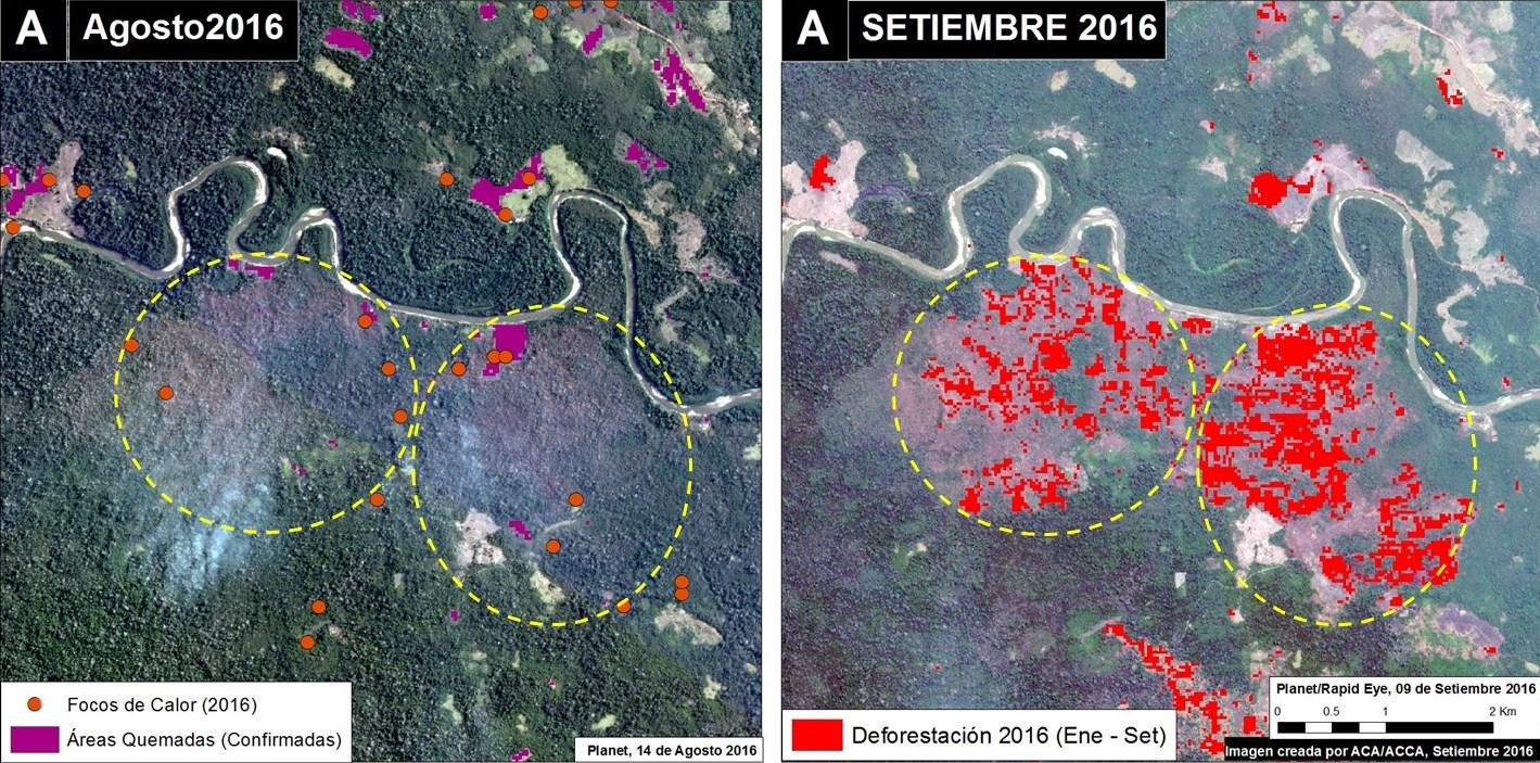 Mapa donde se muestra la coincidencia de focos de calor con la deforestación. Fuentes: Planet, INPE, MAAP.