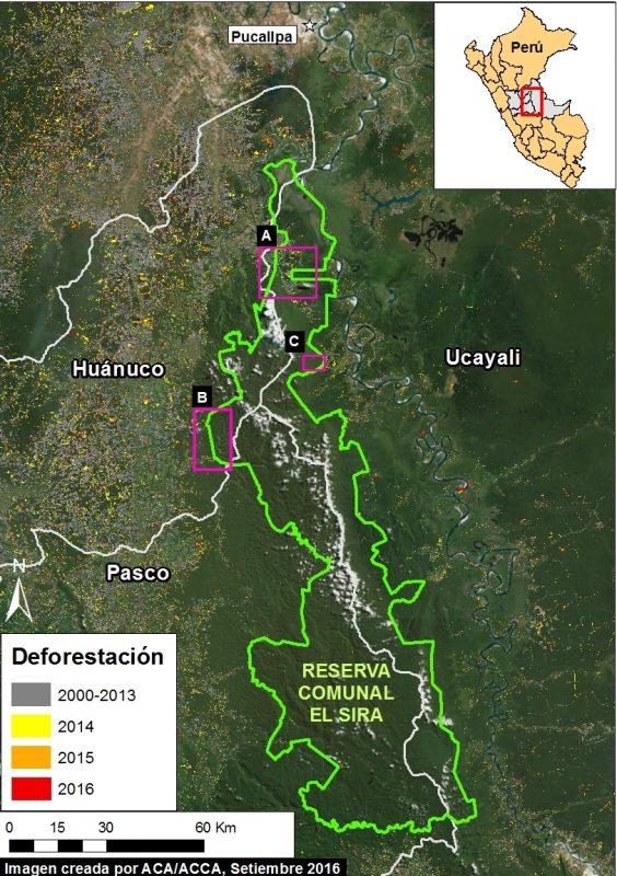 MAAP #45 que demuestra deforestación por pequeña agricultoria migratoria en El Sira. Datos: ESRI, SERNANP