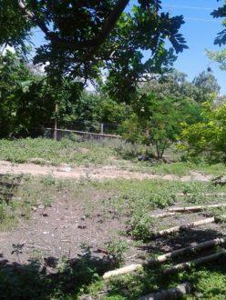 Resguardo Palma Alta en Tolima, donde vive Luz Perla Cardozo.