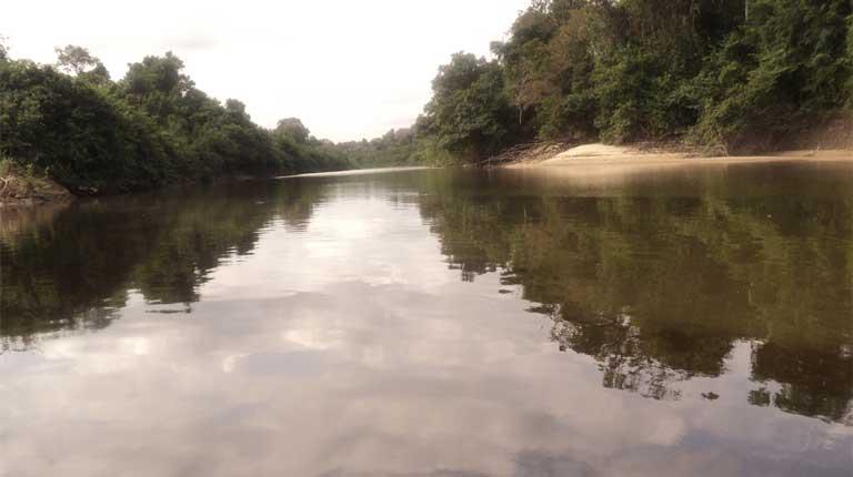 caura-river-basin-in-suapure-venezuela