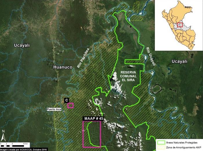 Como se observa, la deforestación se da de manera menor en la zona de amortiguamiento, pero es en el sur de la reserva donde se acentúa. Imagen: MAAP/Sernanp.