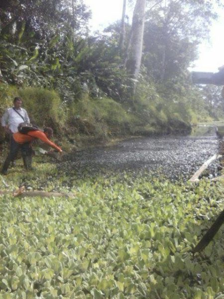 Fotografía del derrame en Urarinas. Foto compartida por Juan Carlos Ruíz Molleda.
