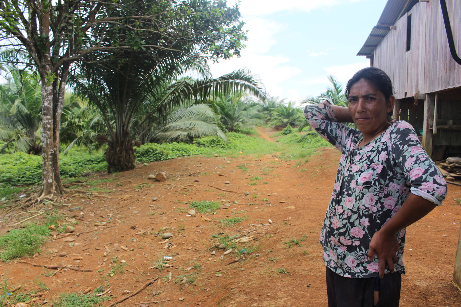 Carmen Bricio shows her oil palm crops. She began cultivating oil palm with her husband five years ago, but it has not gone well. Photo by Daniela Aguilar