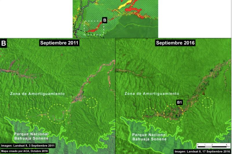 Deforestación en la Reserva Naciona Bahuaja Sonene. Imagen: MAAP/ACCA.