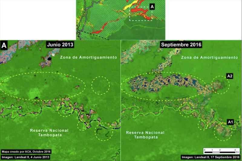 Deforestación en La Pampa. Imagen: MAAP/ACCA.