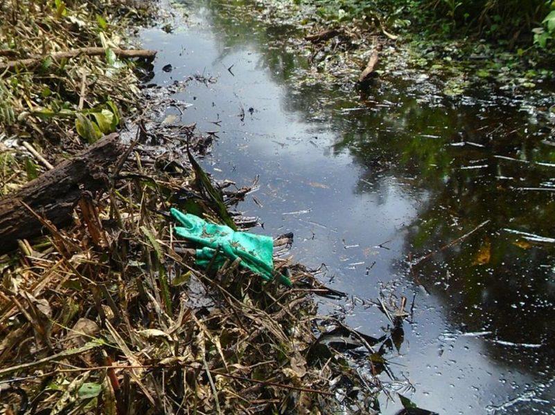Derrame en el Km. 24 del ONP. Foto: Segundo Macuyama Valles.