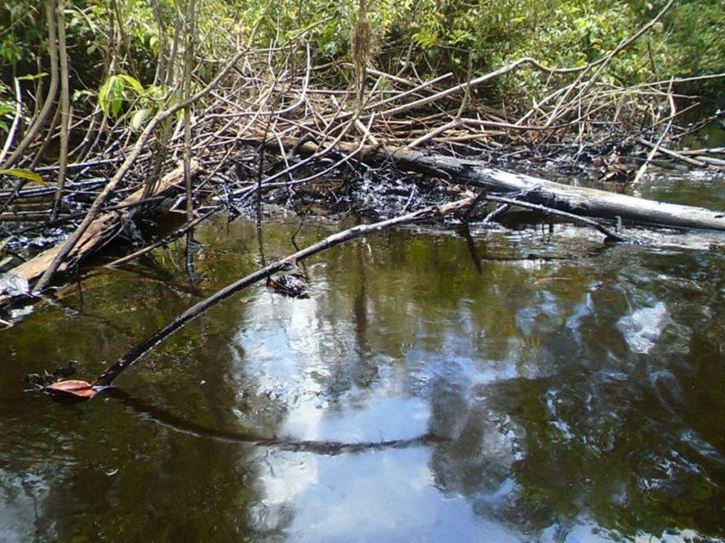 Agua donde cayó el petróleo del oleoducto. Foto: Segundo Macuyama Valles.