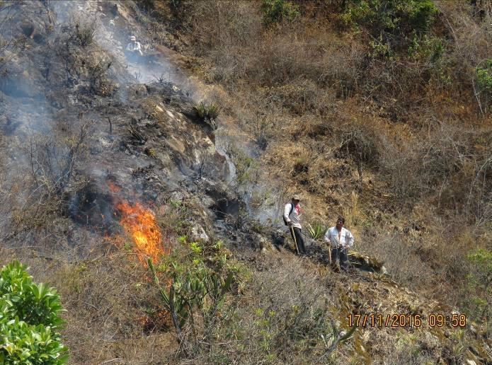 Incendio en el Refugio de Vida Silvestre Laquipampa. Foto: Sernanp.