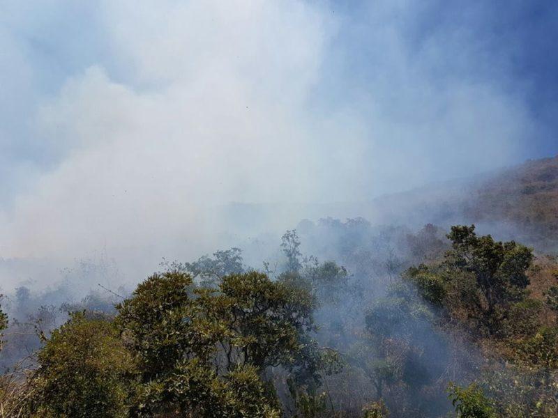 El incendio pone en peligro a tres ecosistemas característicos del Refugio de Vida Silvestre Laquipampa: el bosque seco de colina, el matorral espinoso que es una transición y el bosque montano bajo. Foto: Fernando Angulo Pratolongo.