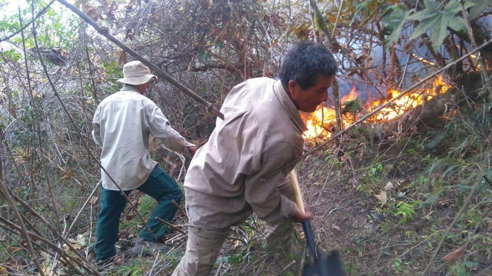 Cerca de 80 hectáreas del efugio de Vida Silvestre Laquipampa han sido afectadas. Foto: Sernanp.