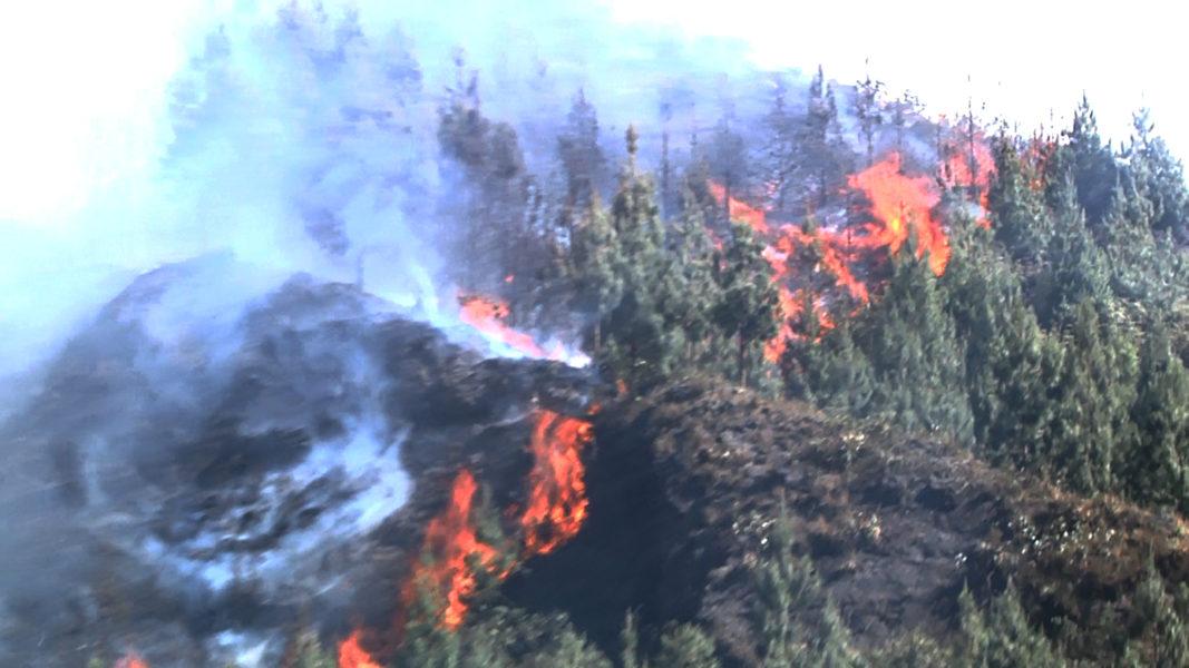 El incendió empezó el 14 de noviembre y afectó los sectores de Chavín, María, El Pilco, parte del Cerro Shipasbamba y La Chira, ubicados en los distritos de Socota y San Andrés de Cutervo, provincia de Cutervo, Departamento de Cajamarca. Foto: Municipalidad de Cutervo.