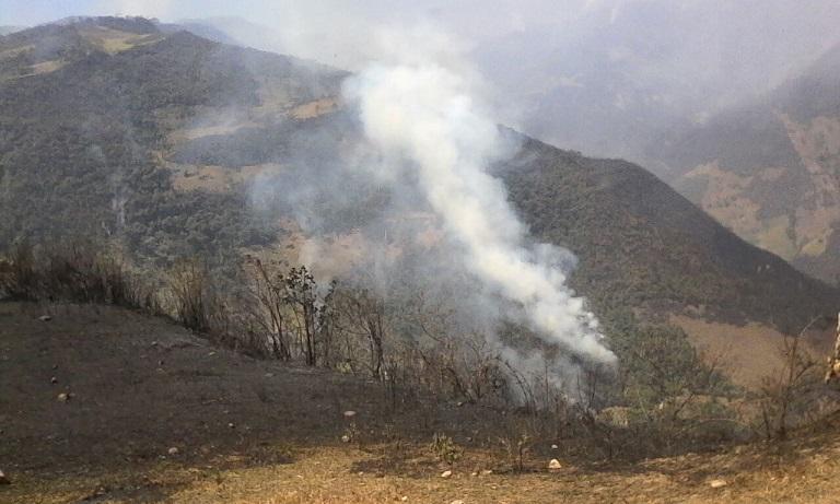Incendio en el Bosque de Protección Pagaibamba. Foto: Sernanp.