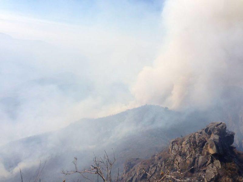 El incendio continúa en el Refugio de Vida Silvestre Laquipampa. Estas imágenes fueron registradas esta mañana. Foto: Cortesía de José Vallejos - Spectacled Bear Conservation Society.