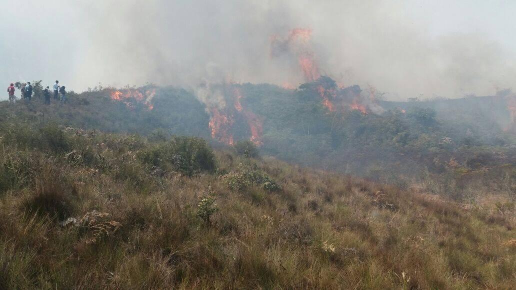 Imágenes registradas esta mañana en el Parque Nacional Cutervo. Foto: Municipalidad de Cutervo.
