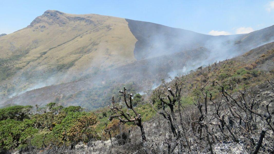 Incendios forestales en el área de conservación ambiental Cachaco-San Pablo, al parecer provocado por una quema que se salió de control. Foto: Alex More.