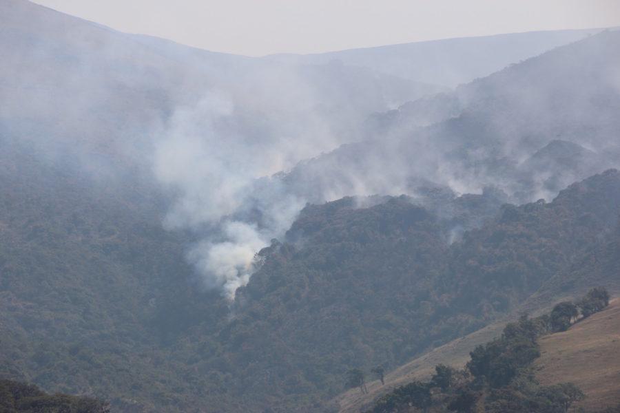 Incendios forestales en Cachiaco-San Pablo. Foto: NCI Perú.