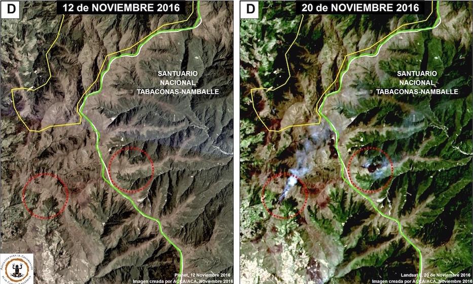 Imagen satelital del Santuario Nacional Tabacos Namballe. Foto: Conservación Amazónica - ACCA , Amazon Conservation Association - ACA y Planet.