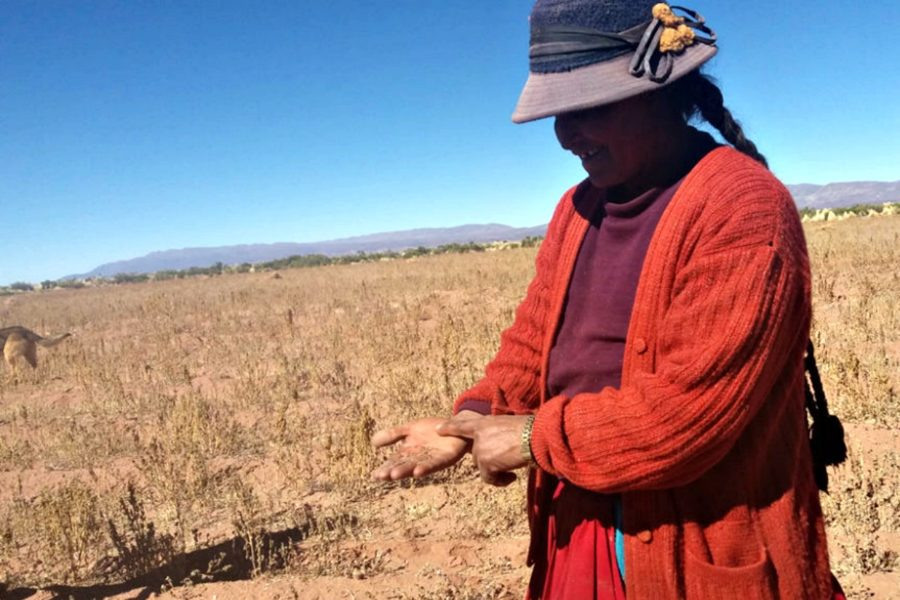 Sequía que afecta a los campesinos en Bolivia. Foto: Ministerio de Desarrollo Rural de Bolivia.