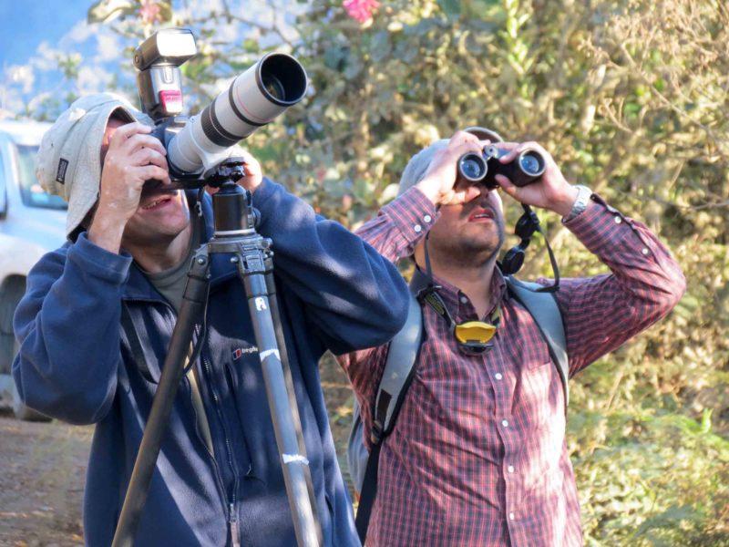 Observadores de aves que visitan Wayqecha. Foto de ACCA.