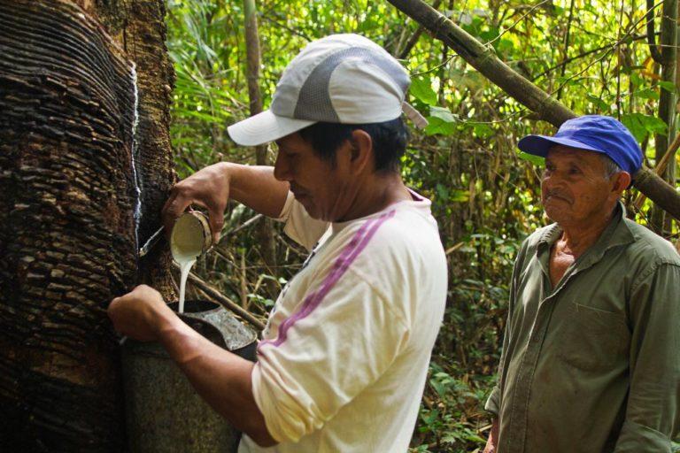 Estanislao Alvarado, otro de los fundadores de la asociación, observa el trabajo de uno sus compañeros. Foto de Pablo Merino.