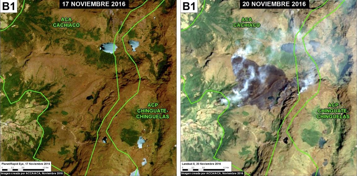Antes y después del incendio forestal en la ACP Chinguate-Chinguelas. Imagen: MAAP/Planet, USGS/NASA.