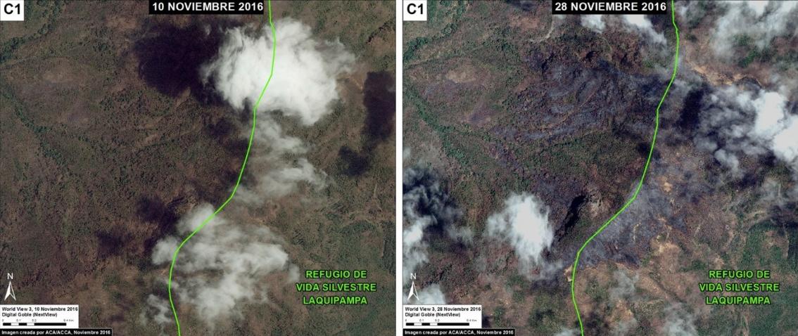 Antes y después del incendio forestal en Laquipampa. Imagen: MAAP/MODIS/NASA, SERNANP, NCI.
