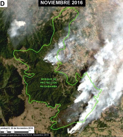 Área afectada en el Bosque de Protección Pagaibamba. Imagen: MAAP/MODIS/NASA, SERNANP, NCI.
