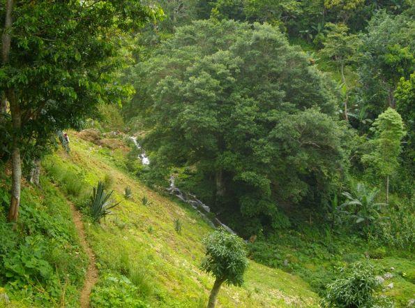 conservacion-colombia-2