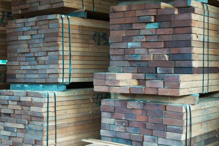 La madera de caoba es la mejor cotizada en el mercado internacional y la que aporta la mayor parte de ingresos a las comunidades. Foto de Joaquín Ruano Cofiño.
