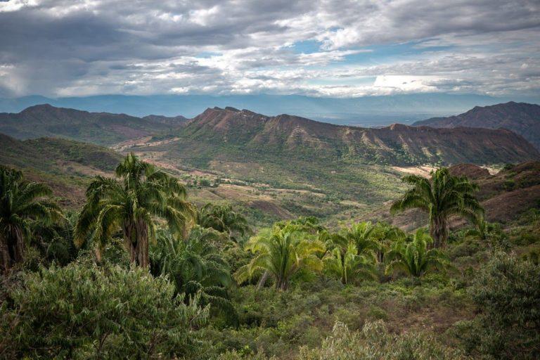 Bosque seco tropical en Aipe, Huila, donde las estribaciones de la Cordillera Central insinúan un paisaje antediluviano. Foto de Felipe Villegas, Instituto Humboldt.