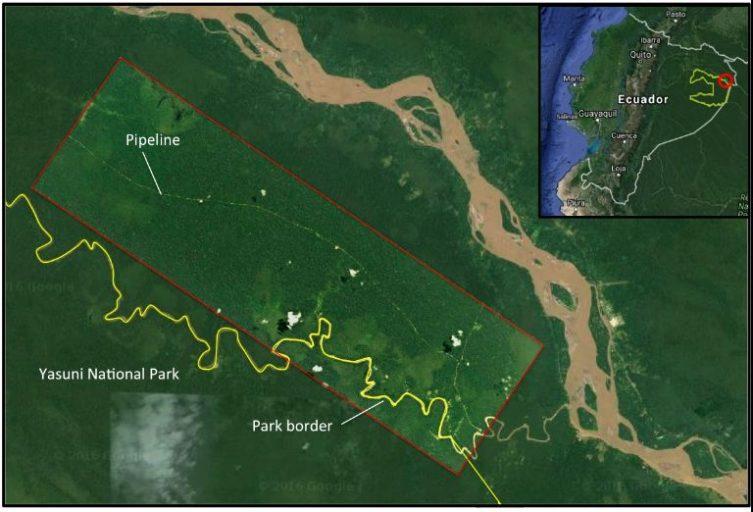 Esta es una imagen de satélite de septiembre de 2016 en alta resolución (3 metros) de la plataforma de perforación y tubería en el bloque ITT de Yasuní, superpuesta con una imagen de Google Earth del 2007. Esta plataforma se encuentra a las afueras del Parque Nacional Yasuní; sin embargo, las futuras plataformas estarán dentro del parque. Imagen de Planeta con el análisis realizado por MAAP e Imágenes de Google Earth.