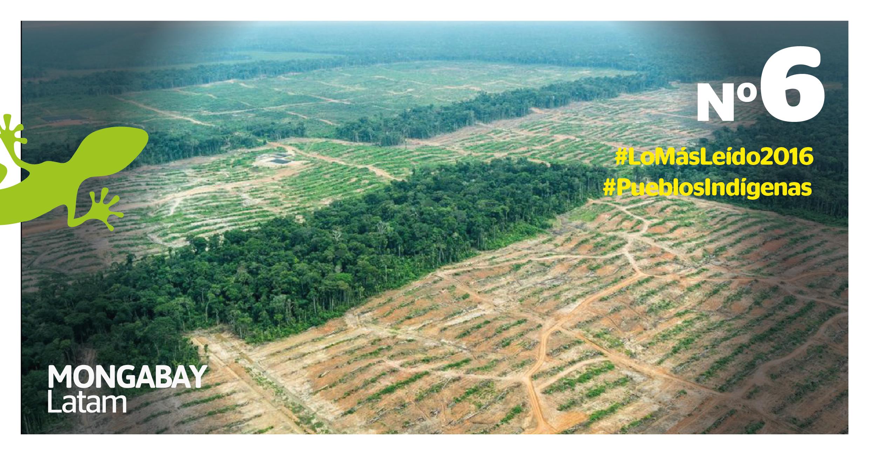 Las comunidades sin título están desprotegidas frente a empresas agroindustriales que invaden sus terrenos y deforestación(Fotografía: EIA)