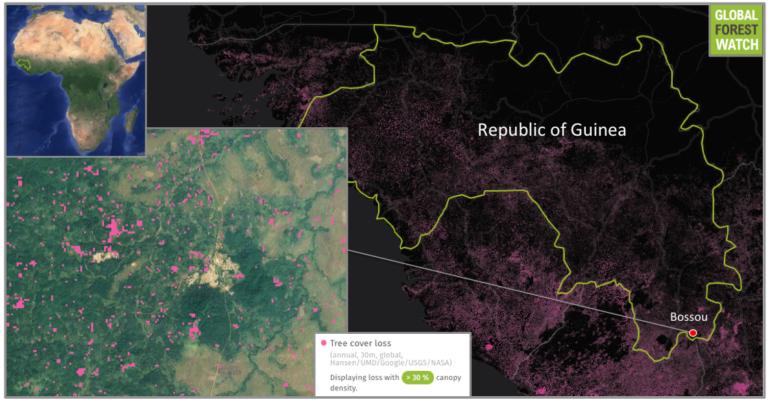 1206-guinea-bossou-map