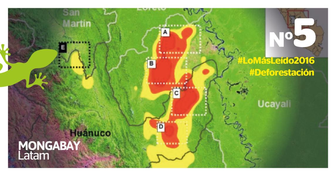 Deforestación en Huánuco. Foto: MAAP.