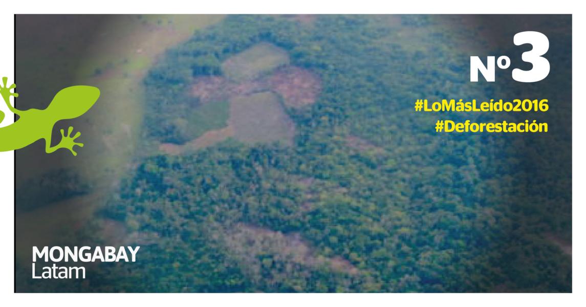 deforestacion-region-3-01