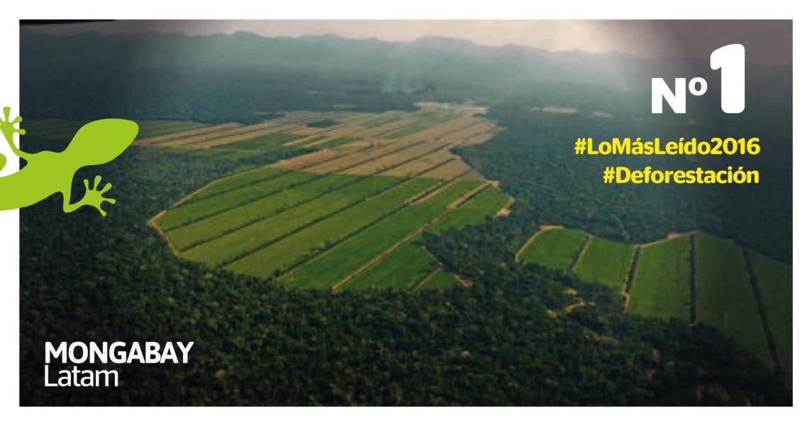 Imágenes obtenidas en un sobrevuelo que muestran la deforestación del Bosque de piedemonte en el municipio de San Buenaventura. Foto: Eduardo Franco Berton.