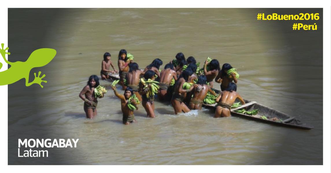 Indígenas en aislamiento en Perú. Foto: Sernanp.