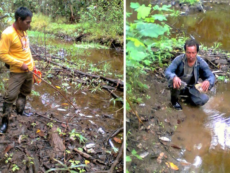 Indígenas revisando el agua impactada por el derrame petroleo. Foto: Puinamudt.