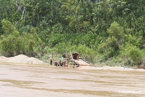 minería 5 El área donde se practica la minería ilegal se vuelve un desierto. Fotografía: Rhett Butler/Mongabay.