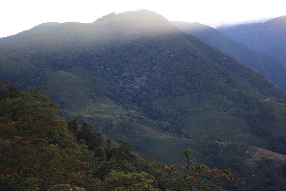 Serranía de Perijá, departamento de Cauca. Foto: Andrés Cuervo.