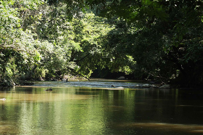 Serranía de San Lucas, ubicada entre los departamentos de San Lucas y Bolivar. Foto: Prensa Rural.