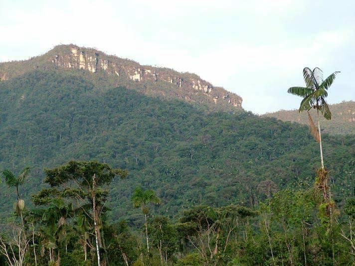 Cordillera del Cóndor. Foto: