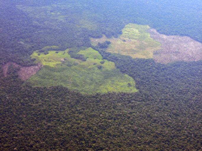 En Colombia se teme que los grupos armados aprovechen el cierre de las áreas protegidas para ingresar con el fin de realizar actividades ilícitas. Foto: Fuerza Aérea.